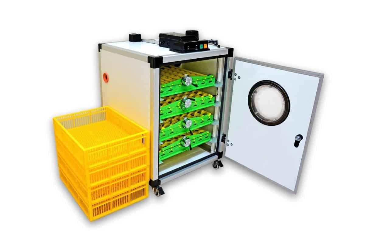 İnkübatör otomatik: seçim önerisi. Yumurtalar için otomatik kuluçka makineleri: yorumlar, fiyatlar